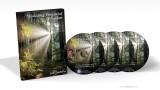 Building Financial Freedom - John Mathews (CD)